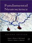 Fundamentalneuroscience